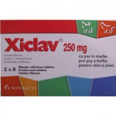 Xiclav 250 mg / cpr