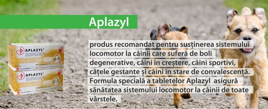 Veterinara Slider