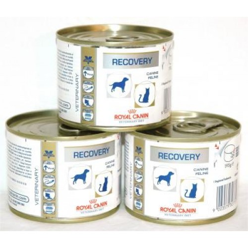 Royal Canin Recovery Conserva 195 g